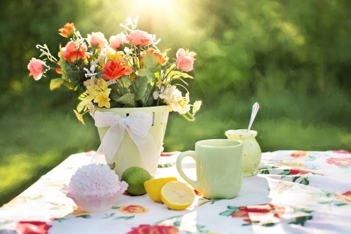flower-petal-meal-green-garden-flora-724865-pxhere.com
