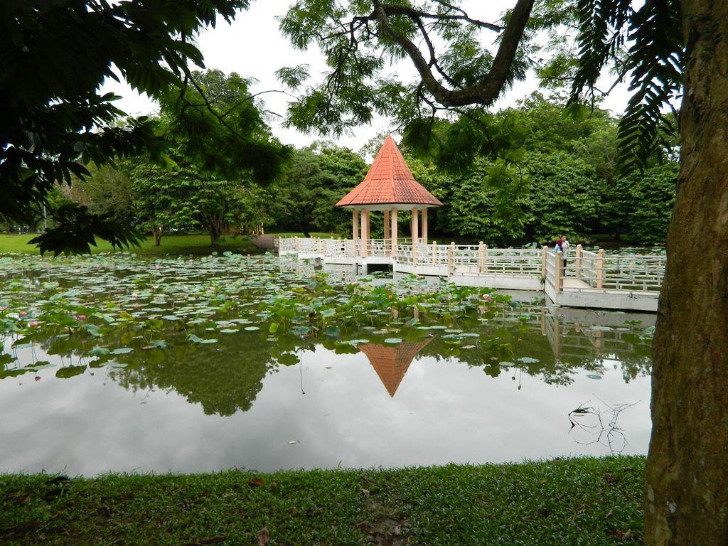 Taman_Tasik_Taiping_004