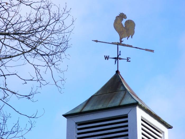 tree-winter-farm-windmill-wind-rural-1116082-pxhere.com.jpg